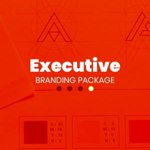 custom logo design and branding package